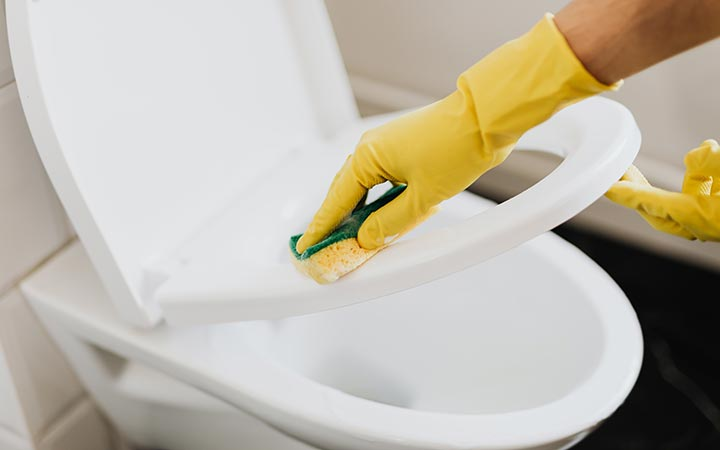 Wipe Down the Toilet with a Damp Sponge